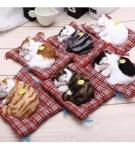 Игрушечные мяукающие котята